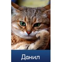 Красивые ники для Одноклассников для девушек и парней 14